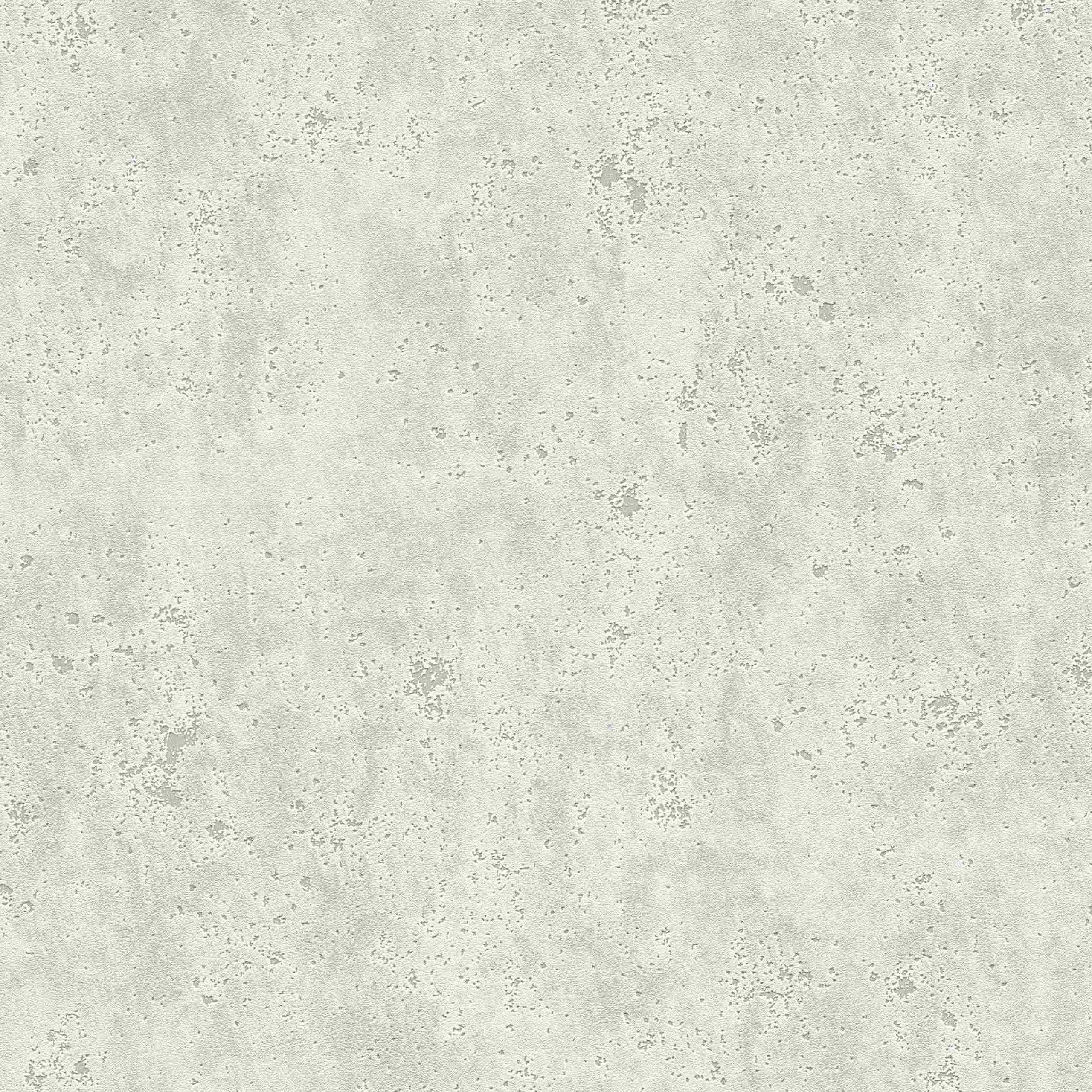 A.S. Creation Tapete Kollektion Flavour 366003 Stein & Betonoptik
