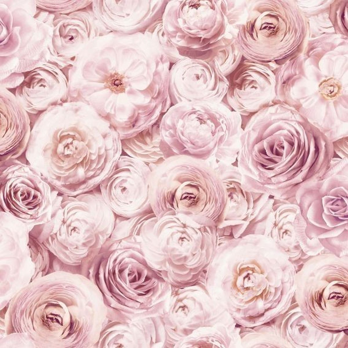 Best of Arthouse Vliestapete Erstklassige Tapete 901700 Rosa Blumentapete